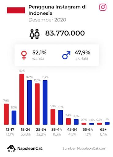 Data pengguna Instagram di Indonesia
